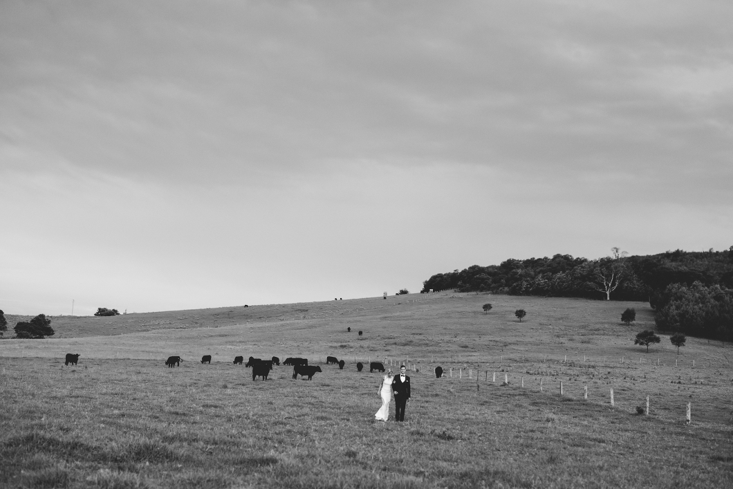 Country Wedding-10127