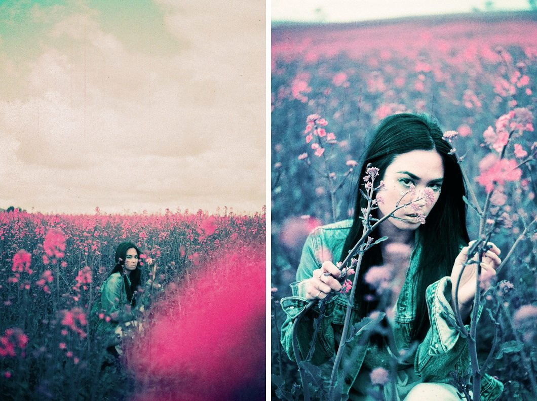 Pink Fields Lomochrome-10003