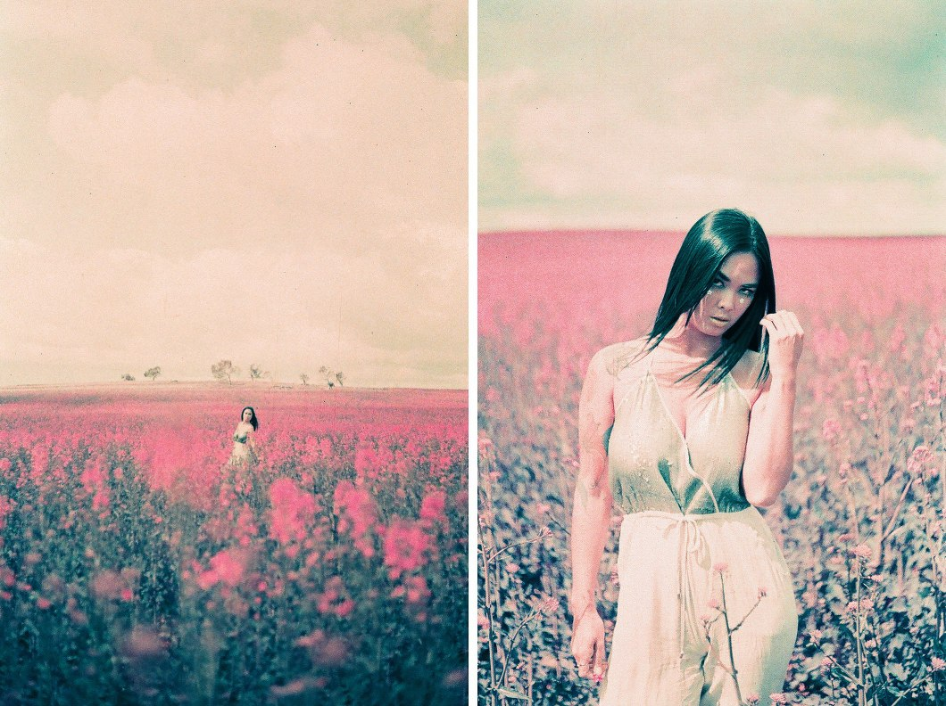 Pink Fields Lomochrome-10008