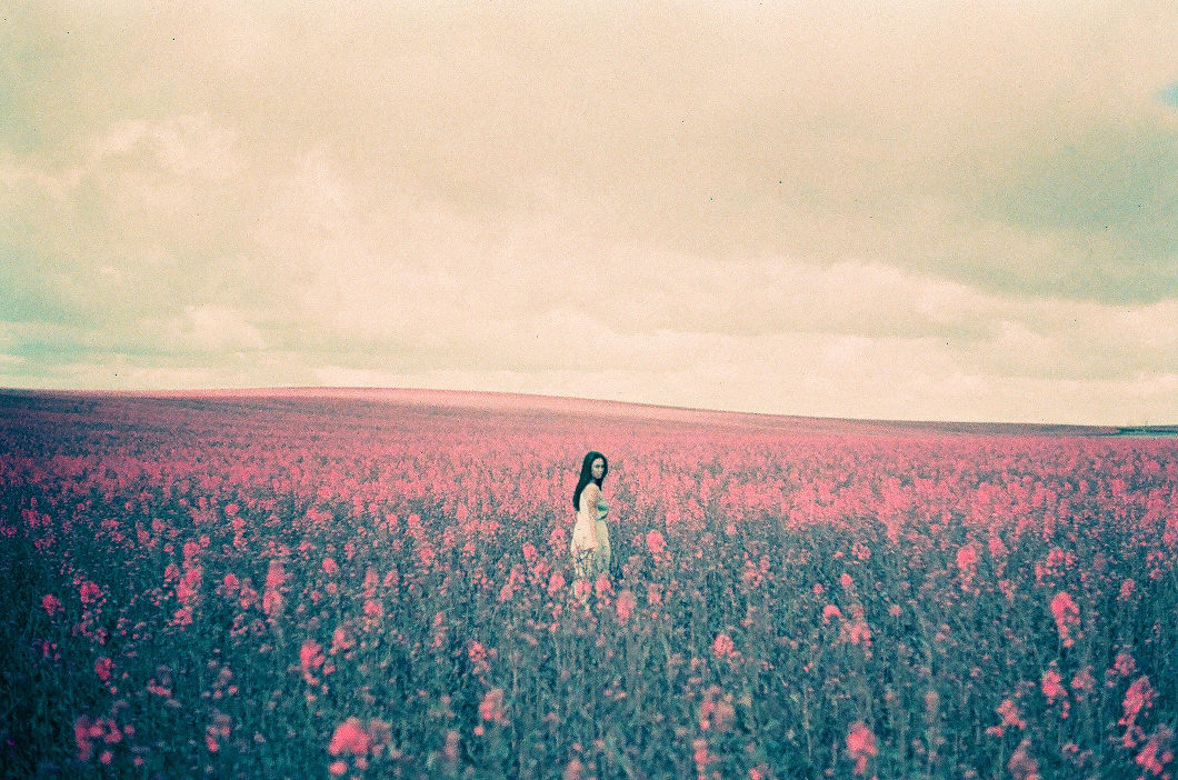 Pink Fields Lomochrome-10009