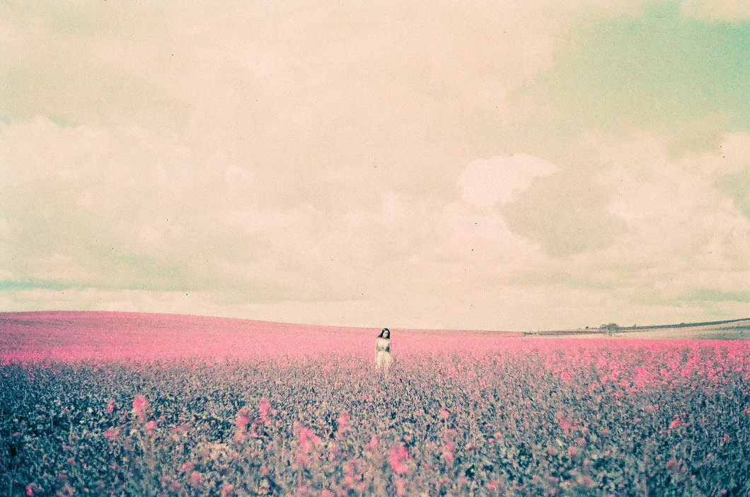 Pink Fields Lomochrome-10011